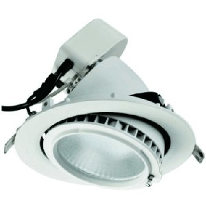 Exceptionnel Dimmable LED Downlight SAA